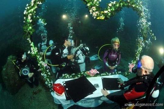 организация свадьбы под водой